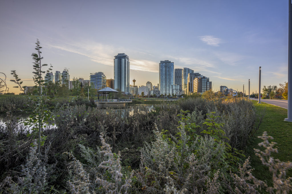 photograph in calgary of the music pavilion looking at downtown